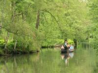 Zu Gast im Spreewald: Urlaub für Naturfreunde
