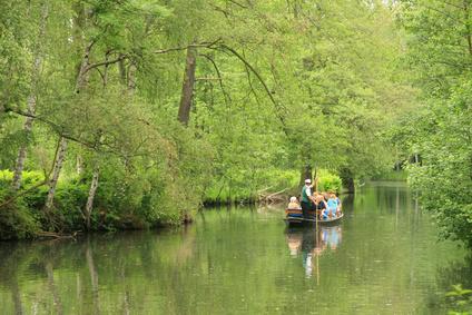 Artikelgebend ist ein Urlaub im Spreewald für Naturfreunde.